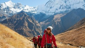 Intrepid Travel launches a new guide to decarbonize travel businesses